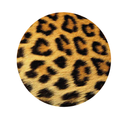 Picture of Pop Sockets - Leopard